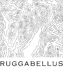 Ruggabellus